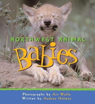 Northwest Animal Babies By Helman, Andrea/ Wolfe, Art